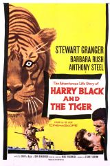 Harry Black and the Tiger 1958 DVD - Stewart Granger / Barbara Rush